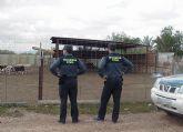 La Guardia Civil detiene a los presuntos autores de dos hurtos en fincas ganaderas