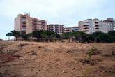 Ayuntamiento de Cartagena y ANSE restauran los arenales del Monte Blanco de La Manga