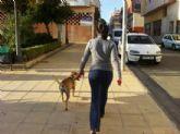 La Policía Local intensificará la vigilancia en cumplimiento de la ordenanza municipal de higiene urbana y tenencia de animales de compañía por las molestias que causan los excrementos en la vía pública