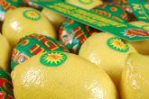 ASAJA Murcia demanda una marca de calidad para el limón de España que 'impacte' en los mercados internacionales