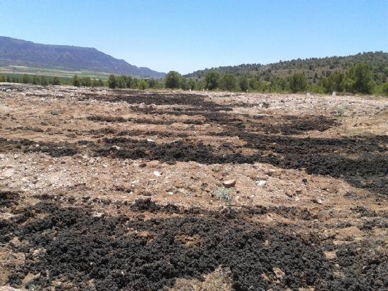 Durante los meses de junio, julio, agosto y septiembre está prohibido el uso de lodos de depuradora con fines agrícolas - 1, Foto 1