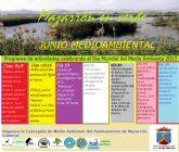 'Mazarrón en Verde' durante el mes de junio para conmemorar el Día Mundial del Medio Ambiente