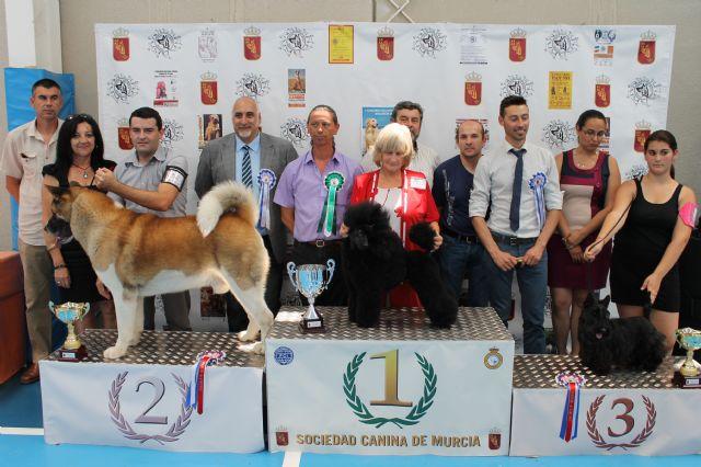150 ejemplares destacan por su elevado nivel técnico en el II concurso nacional canino de Mazarrón, Foto 1