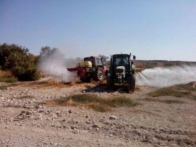 Se realizan trabajos de desinsectación y fumigación en el cauce del Río Guadalentín para evitar la plaga de mosquitos durante el verano - 3, Foto 3