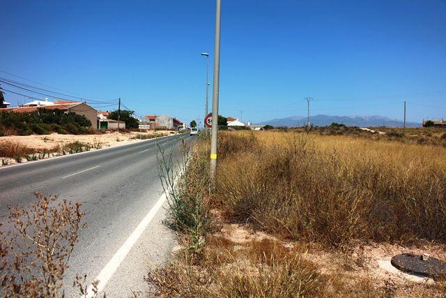 IU exige a la Dirección General de Carreras la limpieza y adecuación de la Avenida Príncipe de Asturias en la Pedanía del Paretón y Cantareros - 1, Foto 1