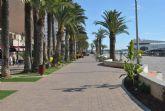 Parques y Jardines realiza un nuevo tratamiento en  palmeras contra el picudo