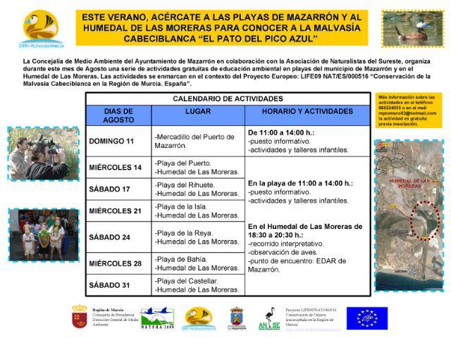 La Malvasía Cabeciblanca volará desde las playas de Mazarrón a los humedales de las Moreras este agosto, Foto 1