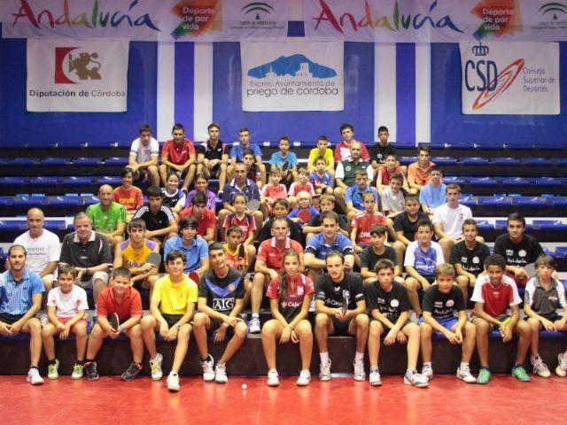 Continúan las actividades en la nueva temporada del Club Totana Tenis de Mesa, Foto 1