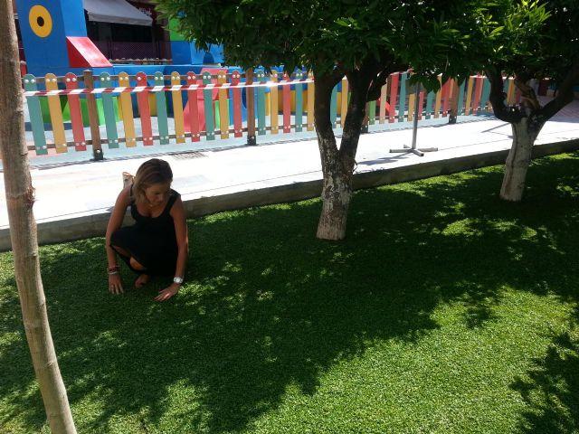 Medio Ambiente incopora a las zonas ajardinadas nuevas plantas tapizantes que requieren un menor mantenimiento y un escaso consumo de agua - 1, Foto 1