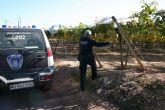 La Policía Local y la Guardia Civil de Totana recuperan la uva robada en un parral de la diputación de El Raiguero