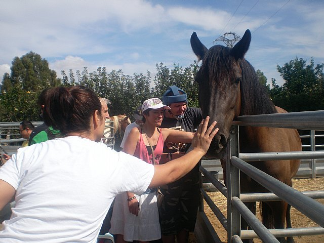 PADISITO visita un centro de terapias ecuestres en Alhama de Murcia, Foto 1
