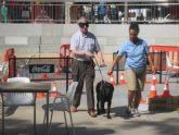Exhibición de perros guía en la Plaza Juan XXIII