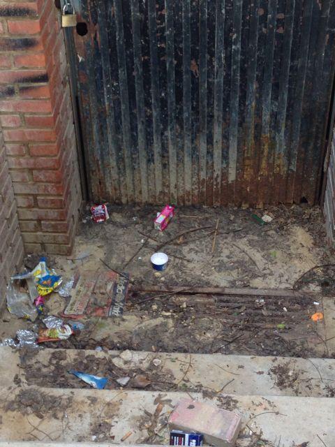 El Grupo Socialista denuncia el olvido y abandono que sufre el barrio de El Secano - 2, Foto 2