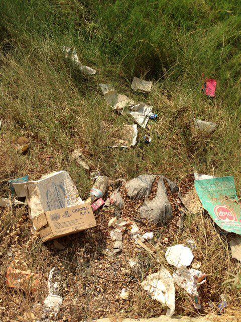 El Grupo Socialista denuncia el olvido y abandono que sufre el barrio de El Secano - 4, Foto 4