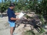 Agricultura asesora a pequeños agricultores de Mazarr�n para conseguir un mayor ahorro de agua y fertilizantes en nuevos cultivos