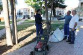 Los cementerios se ponen a punto para la celebraci�n de Todos los Santos 2013