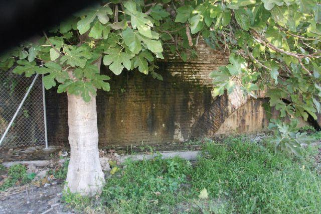 El alcalde advierte del deterioro que están sufriendo la estructuras de la rueda y el acueducto - 4, Foto 4
