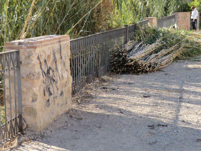IU-Verdes presenta una iniciativa para acondicionar una zona de ocio en el Paseo de Ronda, junto al Puente del Argaz - 2, Foto 2