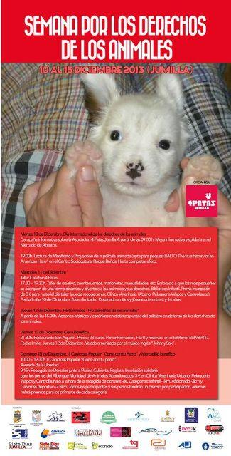 La asociación 4 Patas organiza la II Semana por los Derechos de los Animales - 3, Foto 3