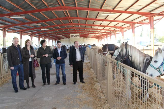 Inaugurada la tradicional Feria de Ganado Equino con la participación de más de 500 cabezas de ganado - 1, Foto 1