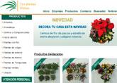 Compra tus Flores de Pascua en tusplantasonline.com