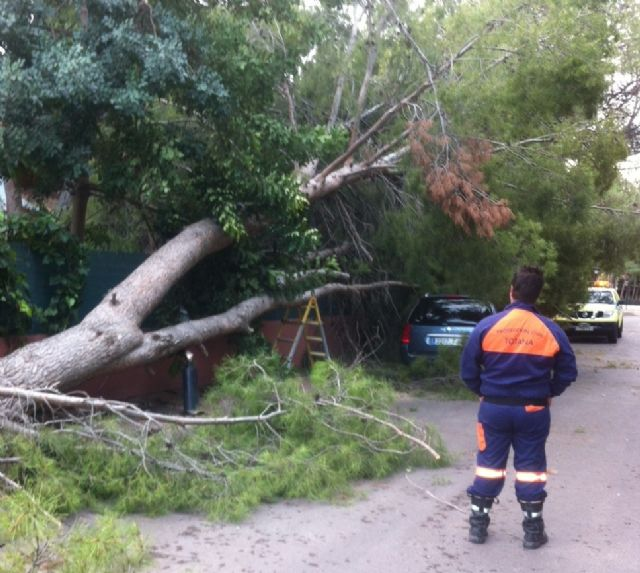 Civil Protection performs several services as a result of wind and rainstorm in the town