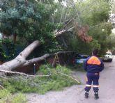 Protección Civil realiza varios servicios a consecuencia del temporal de lluvia y viento en el municipio