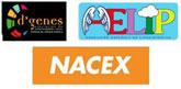 Nacex Totana muestra su apoyo y colaboración a D´Genes y AELIP