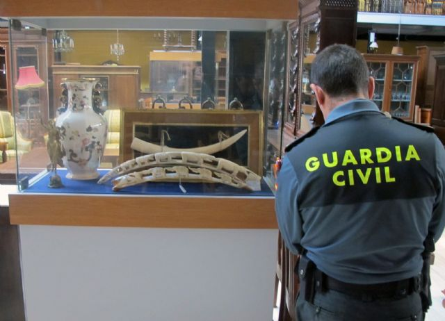 The Civil Guard seize twenty pieces of ivory trade in Totana
