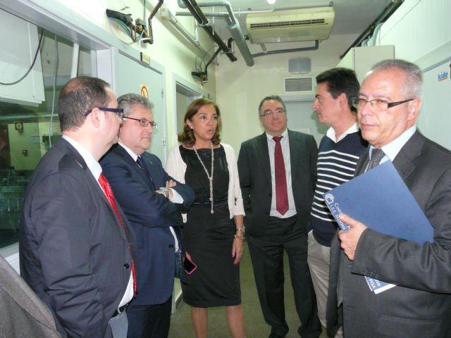 La Secretaria de Estado de Investigación visita el CEBAS-CSIC - 2, Foto 2