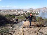 Sofocado un incendio de pinada y matorral bajo en San Julián