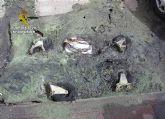 La Guardia Civil detiene a cuatro jóvenes por quemar una veintena de contenedores en Santomera