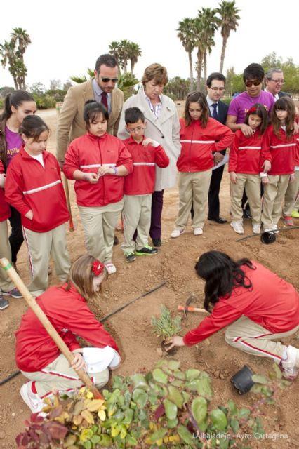 Los pequeños del Miralmonte reforestan el Parque de los Exploradores - 2, Foto 2