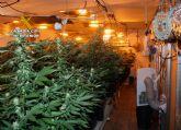 Desmantelado un invernadero clandestino de marihuana en Puerto Lumbreras