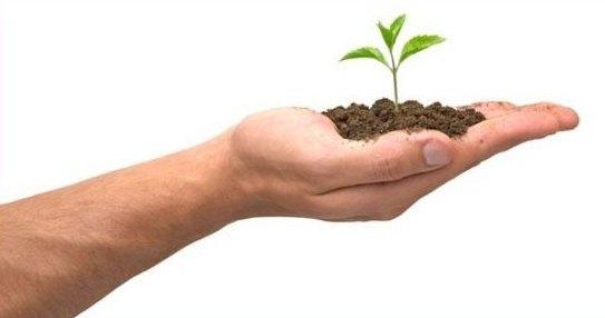 Las concejalías de Fomento del Empleo y Agricultura organizan un nuevo curso de manipulador de productos fitosanitarios, Foto 1