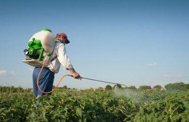 Vuelven a convocar un curso dirigido a agricultores de manipulación de productos fitosanitarios nivel cualificado, Foto 1