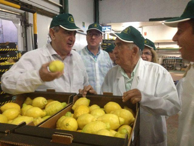 González Tovar: La creación de empleo tiene que venir de la mano del impulso de la actividad emprendedora - 1, Foto 1