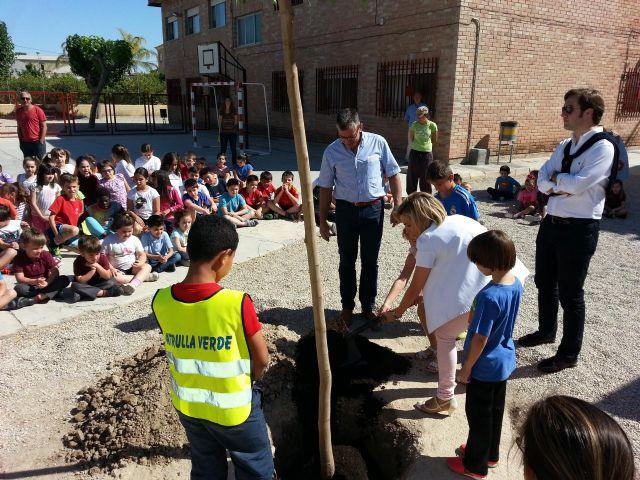 Cerca de 49.000 escolares de 58 centros educativos del municipio participan en el programa Escuelas Verdes - 3, Foto 3