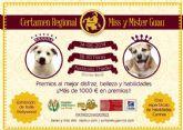 FDARMUR organiza el Certamen Miss y Mister Guau 2014 Región de Murcia a beneficio de los animales abandonados y maltratados.