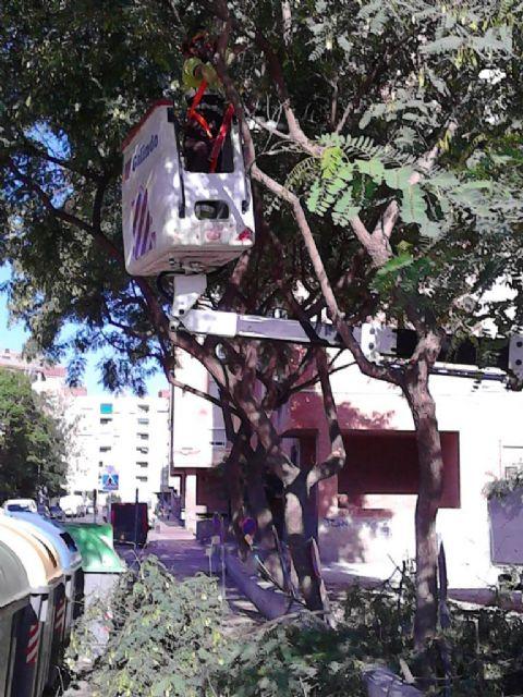 Medio Ambiente continúa con sus trabajos de mantenimiento y mejora de espacios verdes en los barrios y pedanías de Murcia - 1, Foto 1