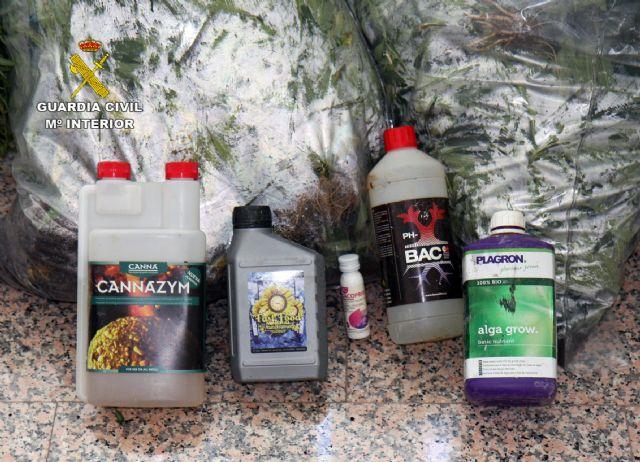 La Guardia Civil detiene a los cuatro responsables de dos plantaciones de marihuana en Espinardo y Cabezo de Torres - 4, Foto 4