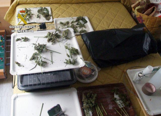 La Guardia Civil desmantela un invernadero intensivo de marihuana en un domicilio de Pliego - 1, Foto 1