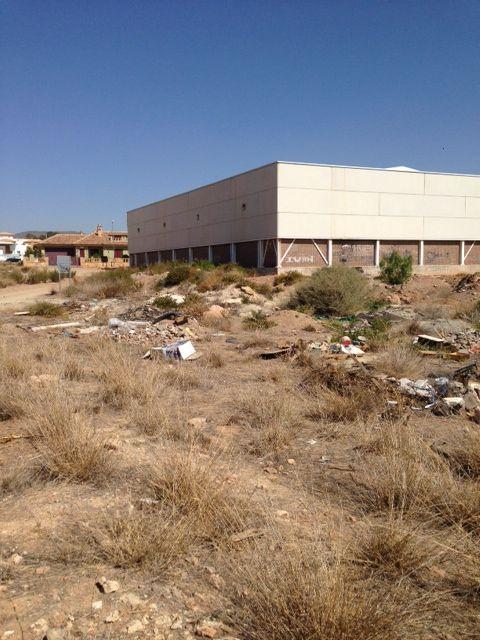 El PSOE expone la situación de abandono de Almendricos - 1, Foto 1