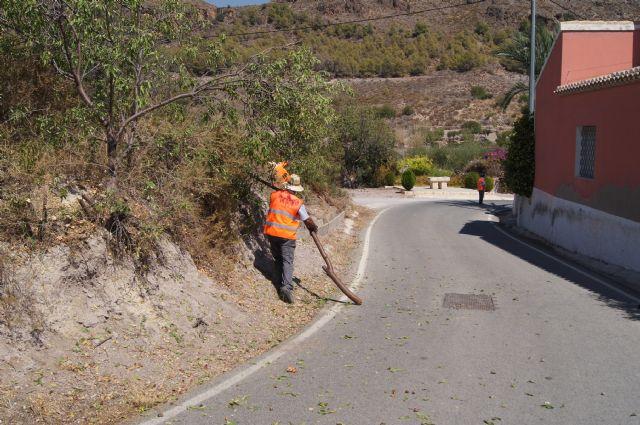 La Direcci�n General de Carreteras procede a la limpieza de cunetas y desbroce de obst�culos que invaden la carretera de La Huerta, Foto 3