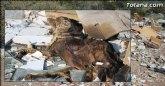 Las escombreras ilegales son un ejemplo más de la desidia del Partido Popular de Totana