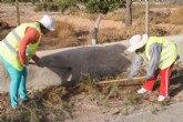 El Ayuntamiento lleva a cabo un plan de choque de limpieza de caminos y cunetas a través de las 117 personas contratadas mediante el programa de los Consejos Comarcales