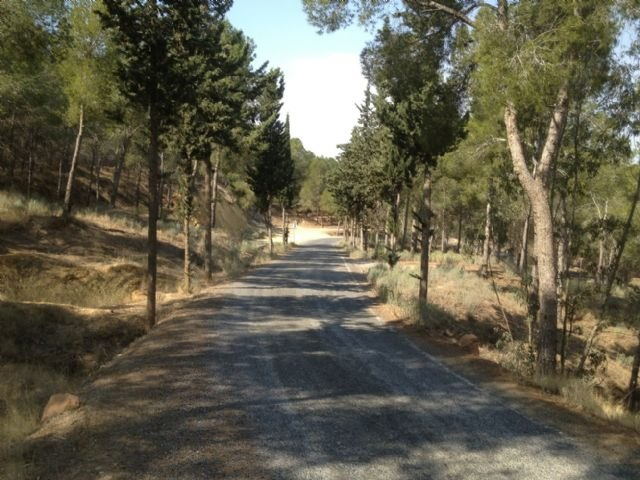 Medio Ambiente mejorará la red viaria de acceso al área recreativa de la Cresta del Gallo, en el Parque Regional El Valle, Foto 1