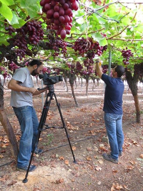 El Ministerio de Agricultura elige Murcia para grabar un vídeo divulgativo sobre el uso sostenible de productos fitosanitarios