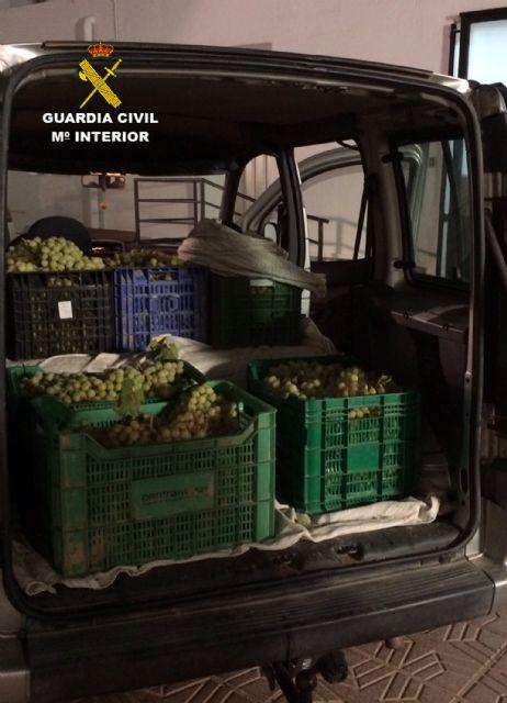La Guardia Civil detiene a 32 personas relacionadas con robos en explotaciones agrícolas de la Región - 2, Foto 2
