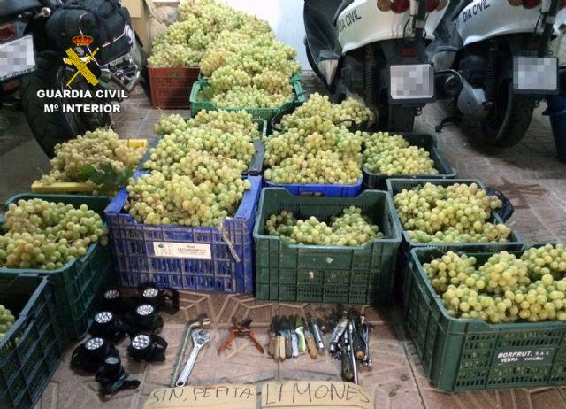 La Guardia Civil detiene a 32 personas relacionadas con robos en explotaciones agrícolas de la Región - 3, Foto 3